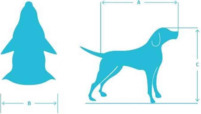 Dog Example Petair