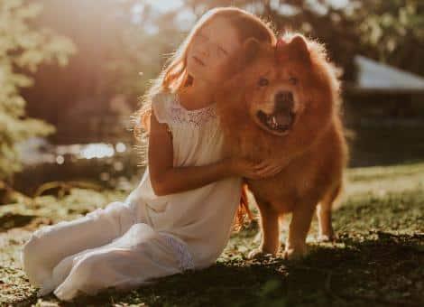A blonde haired child cuddling a big brown dog