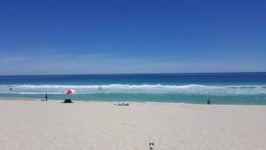 peasholm street dog beach - Places to Take Your Dog in Perth