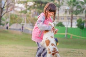 child and dog playing in the park