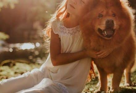 child and dog hugging in the sun