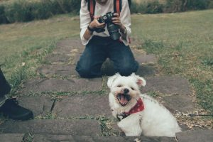 lady holding a camera and a small white dog