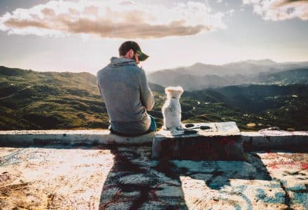 Man and dog sat on a wall overlooking hills