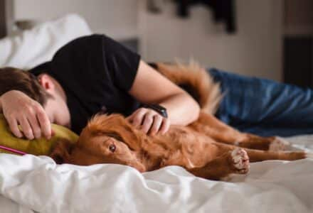 Should we be co-sleeping with our dogs?