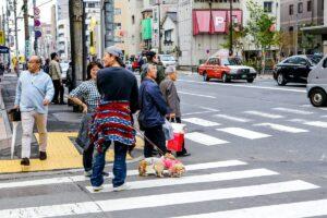 where to take your dog in Japan