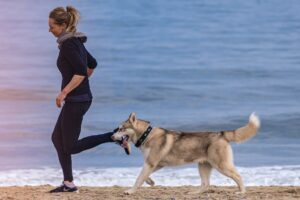dog breeds that love running